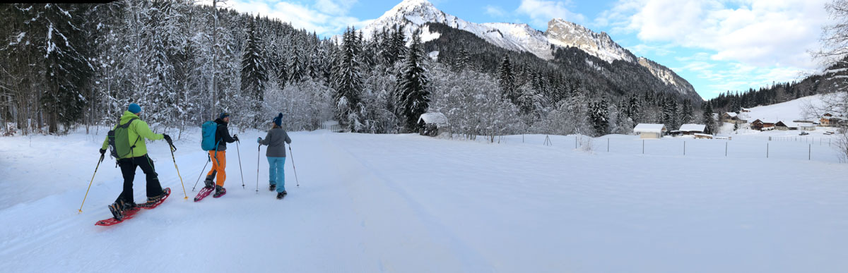 Skiing in Morzine, France - Snowshoeing with Guides